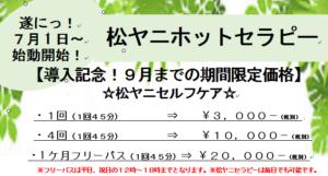 2017-07-02_095217-300x161