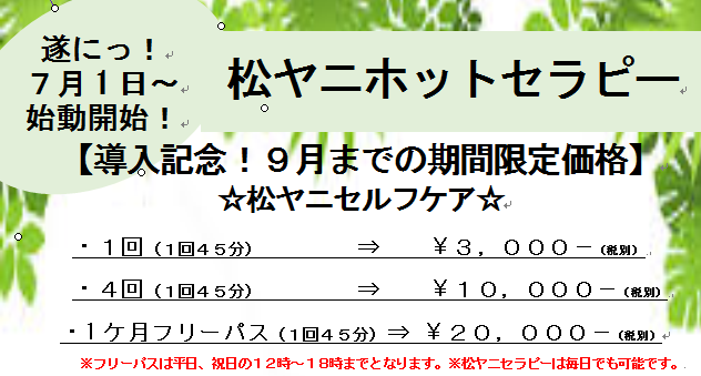 2017-07-02_095217